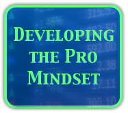 Developing the Professional Mindset