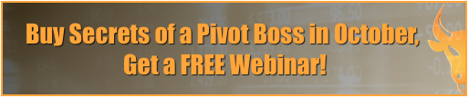Buy Secrets of a Pivot Boss
