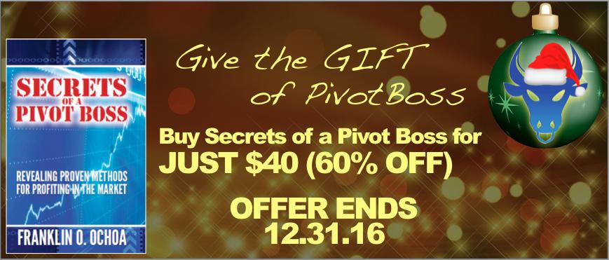 PivotBoss Holiday Offer